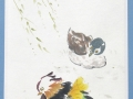 Ducks - Mandarin by Janet-Ferrier Robinson