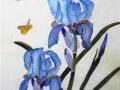 Flowers and Butterflies on Silk by Karen Gowlett